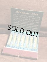 Brookdale Lodge Match