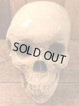 Light Skull  ビンテージ スカル ライト プラスチック製 80年代 トイ ヴィンテージ