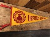 Ursinus College Felt Pennant アーサイナス ビンテージ ペナント フロッキー 50年代 フェルト カレッジ ヴィンテージ vintage