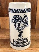 Magic Mountain Beer Mug マジックマウンテン ビンテージ ジョッキ ビアマグ 70年代